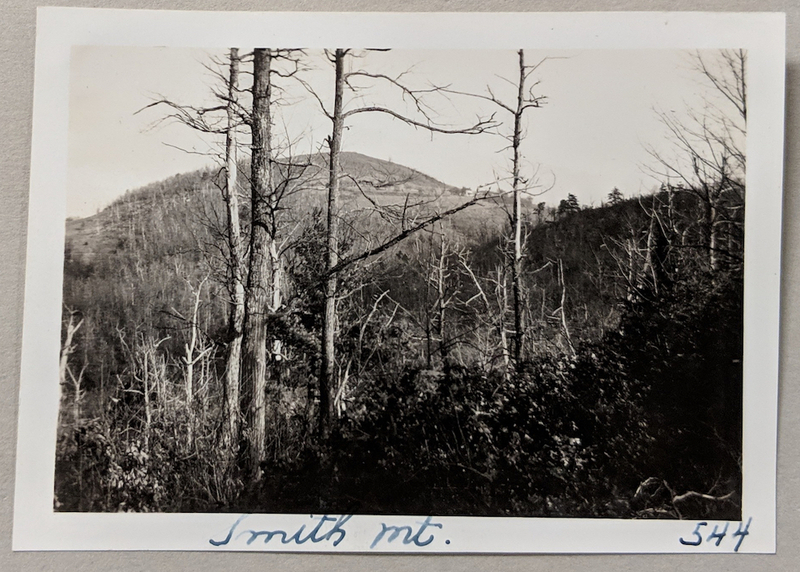 Smith Mountain from the Appalachian Trail (1932)