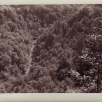 Dan River Gorge.jpg